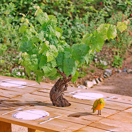 "Jardin ""La salle à manger"""