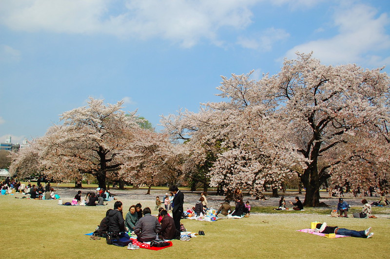 05-Japan07_1480.JPG
