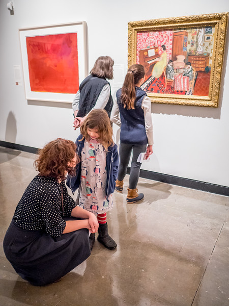 020417_3217_MAM Matisse Preview.jpg