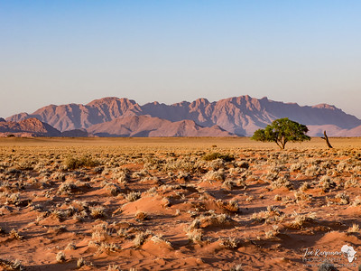 Late Afternoon in Sossusvlei
