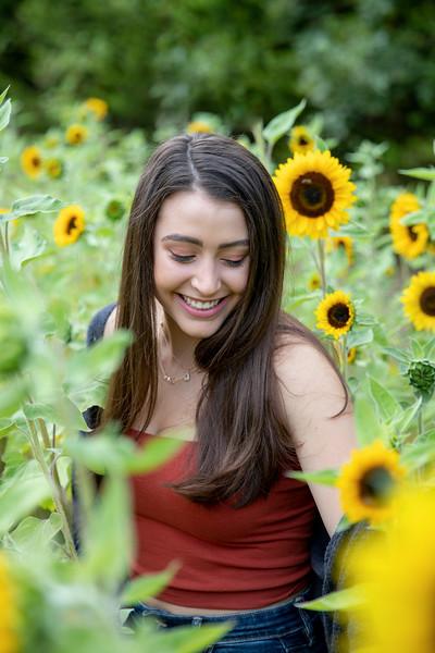 Sunflower Field, Poulsbo, WA