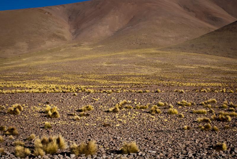 Tupiza to Uyuni 20120530 (7).jpg
