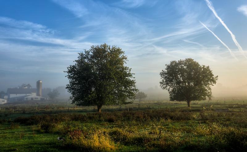 sunrise - foggy pasture groffdale meadows 10-8-15(p).jpg