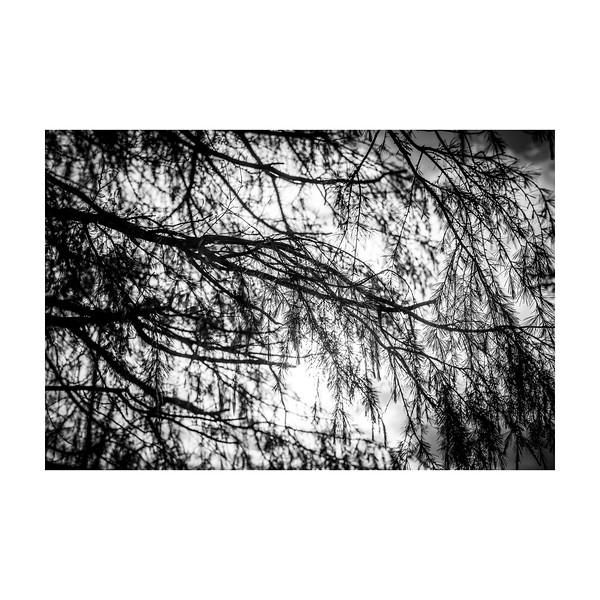 192_Overhang_10x10.jpg