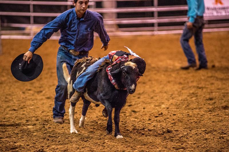Rodeo_551.jpg