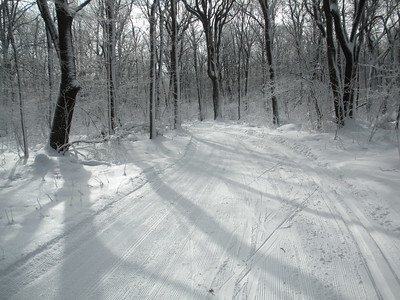 Older Ski Photos
