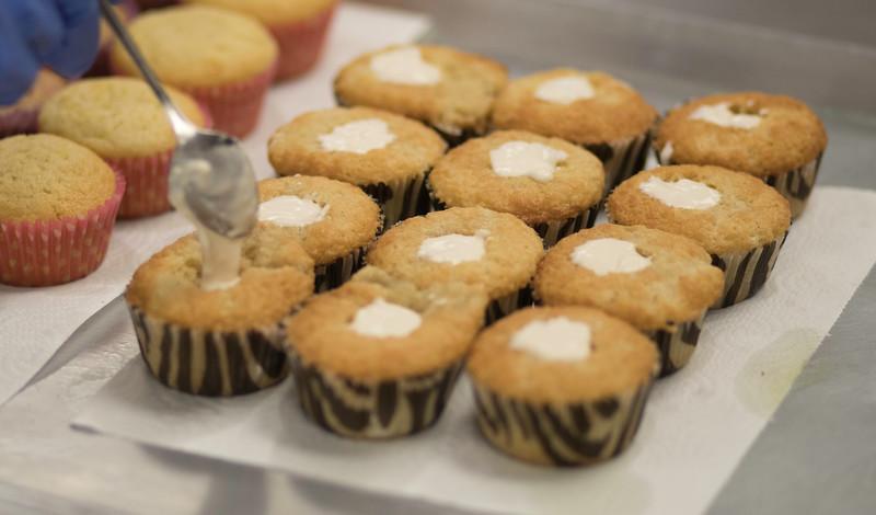 CupcakeDR-50.JPG