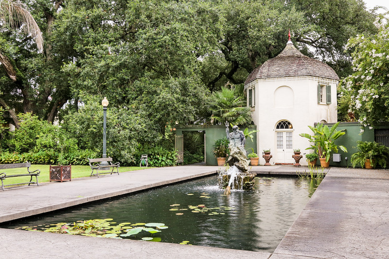 garden space with pond
