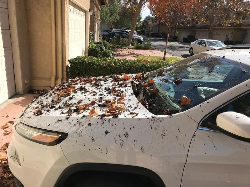 My Car, dumped on