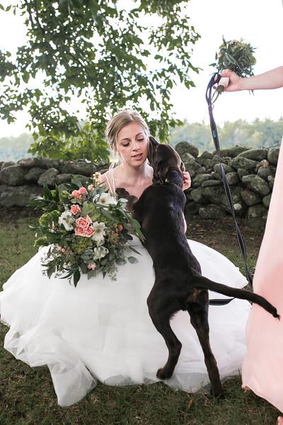Jenna & Jamie's Rustic Bliss Farm Wedding