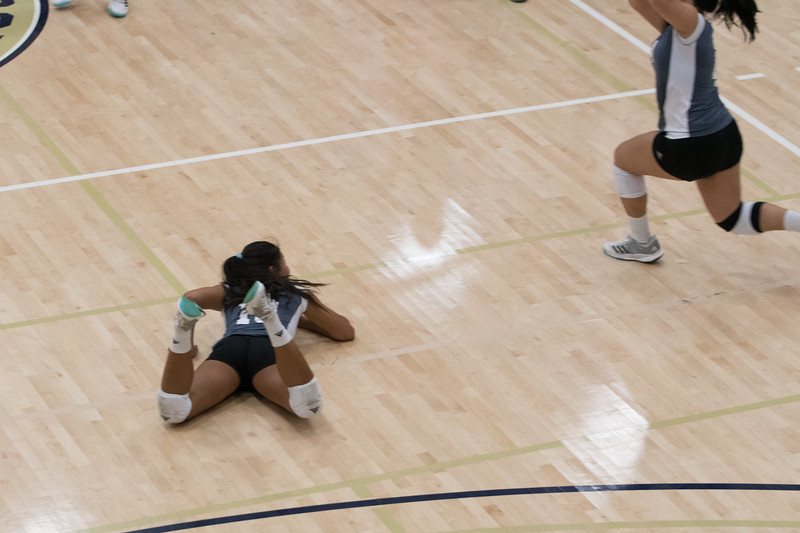 HPU Volleyball-92926.jpg