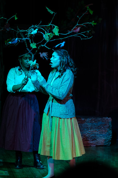 2018-03 Into the Woods Performance 0916.jpg