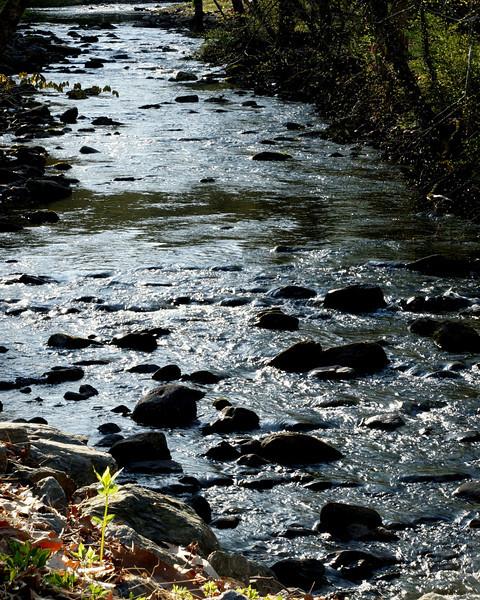 Worthington stream.jpg