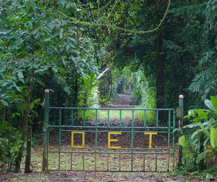 Organisation des études tropicales