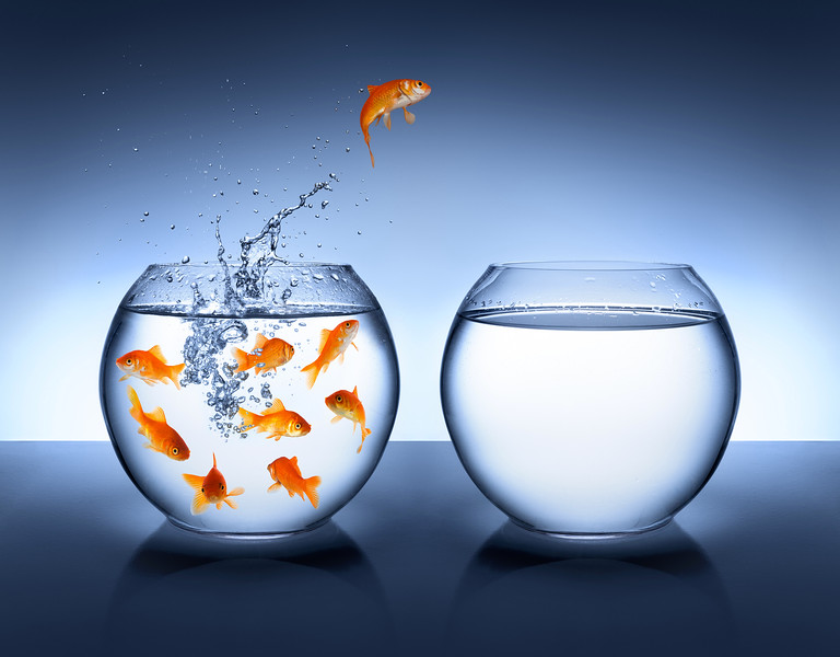 //www.dreamstime.com/royalty-free-stock-photos-goldfish-jumping-out-water-improvement-career-concept-image37503448