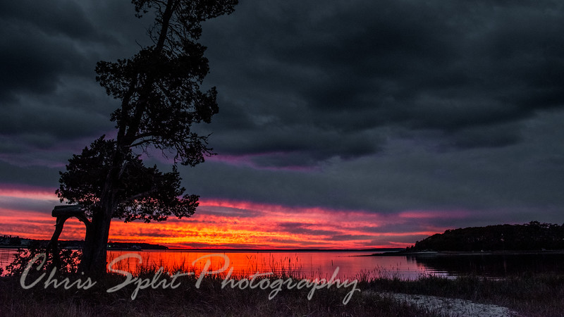 sunsets (1).jpg