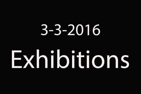 3-3-2016 TxLaBRA at T2 Arena 'Exhibitions'