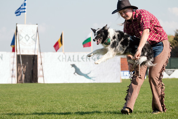 Dog Dancing, Mediterranean Dog Challenge 2017 by Drive Unlimited - Canine Sports Center