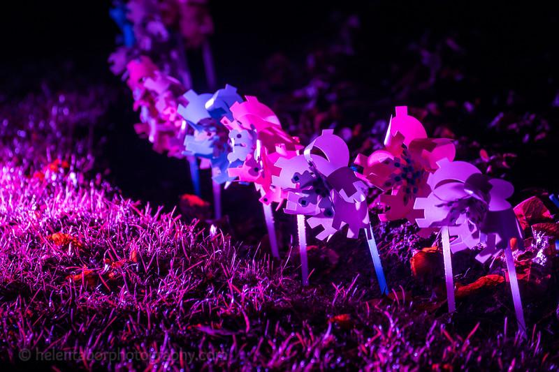 Illuminated Winter Wonderland by night-27.jpg