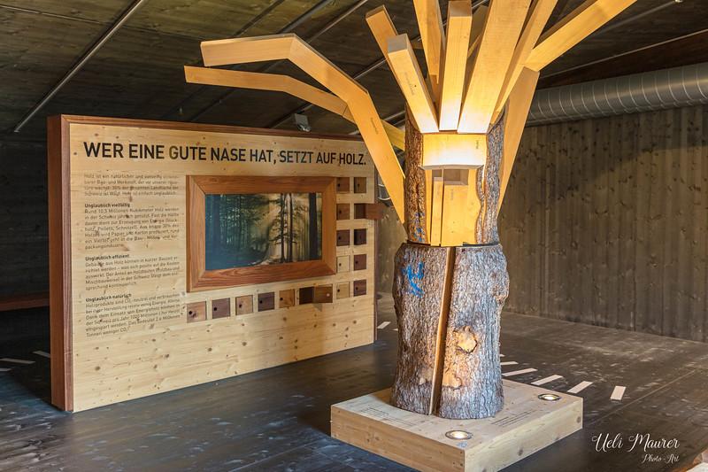2019-09-27 Umweltarena Spreitenbach - 0U5A9296.jpg