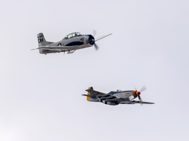 P-51 Lady Alice and T-28
