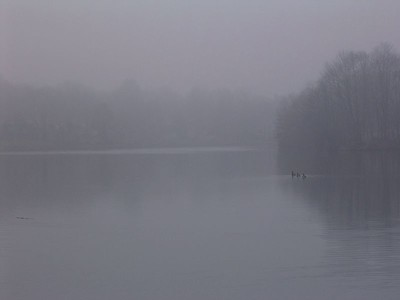 Nature in Winter - January 2005