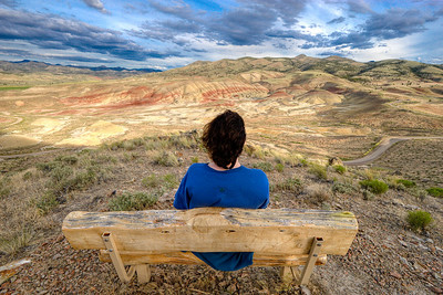 The Painted Hills - July, 2008
