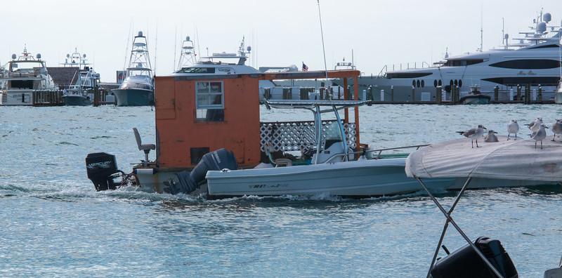 harbour-island-2014-124.jpg
