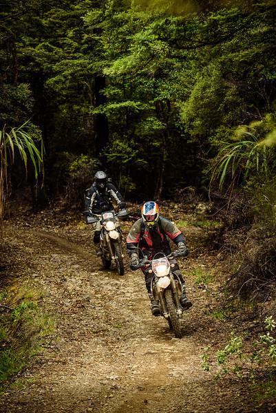 2019 KTM New Zealand Adventure Rallye (1336).jpg