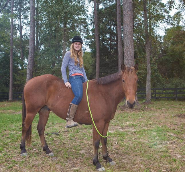 horses & staff-306.jpg