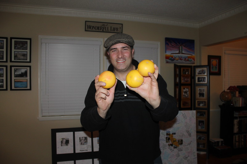 Grapefruits from Huell Howser's Yard IMG_6575.JPG