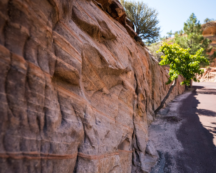 Zion Mt Carmel Highway_FullSize-14.jpg