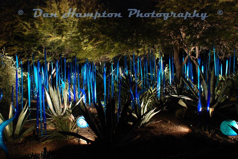 Desert Botanical_289.JPG