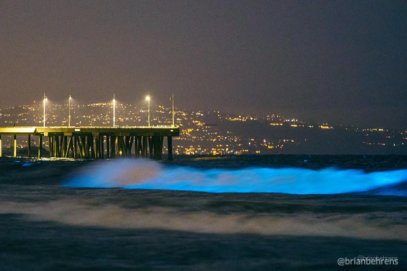 2020-05-02-bioluminescent-waves-9.jpg