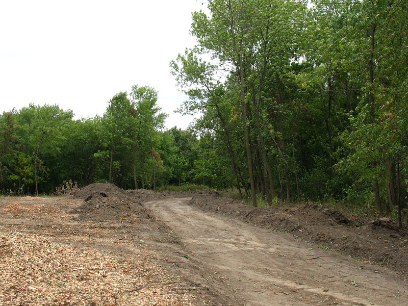 What used to be a 3-foot-wide grassy path, used by deer as much as humans, under construction as a path/road.