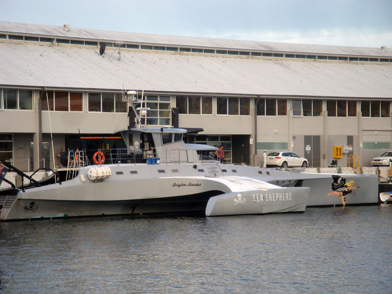Brilliantly located on the waterfront, close to - could you believe it - the Sea Shepherd's Brigitte Bardot! Obviously taking a short break from harassing Japanese whalers in the southern ocean. They are the coolest outfit - I'm dying to volunteer on one of their ships, someday.