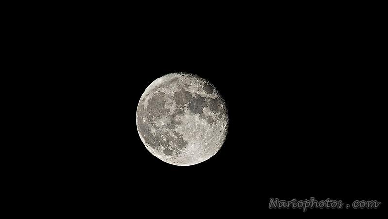 Night 2 full moon  photo shoot NDF_3704 - Version 2