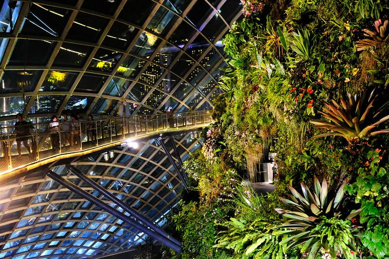 sci-fi-garden-sg.jpg