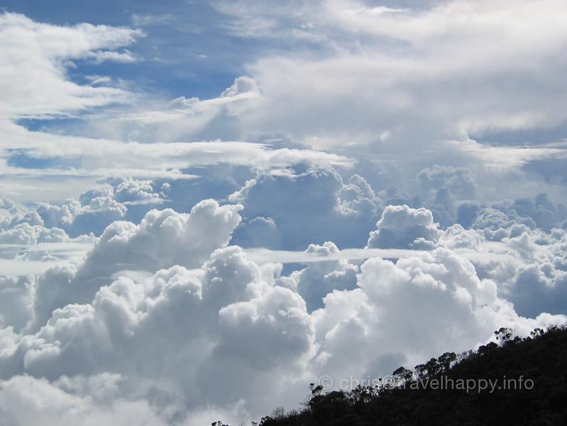 Borneo 2004 036.jpg