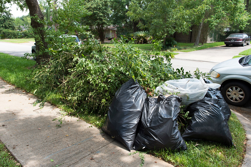 Team Up to Clean Up_2019_059.jpg