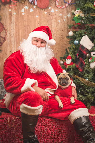 Santa Photos at Pet Valu - 05.12.2015