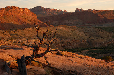 Canyons & Deserts