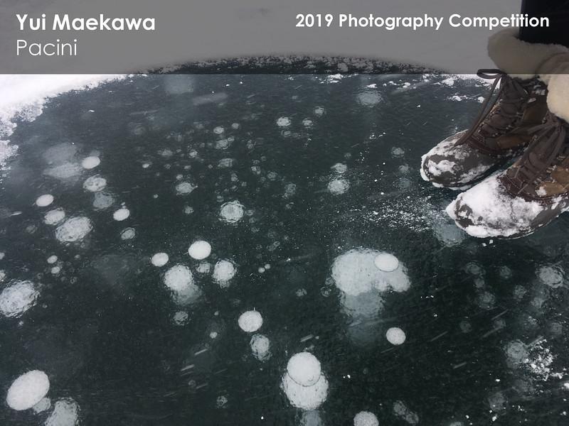 Yui Maekawa 5.jpg
