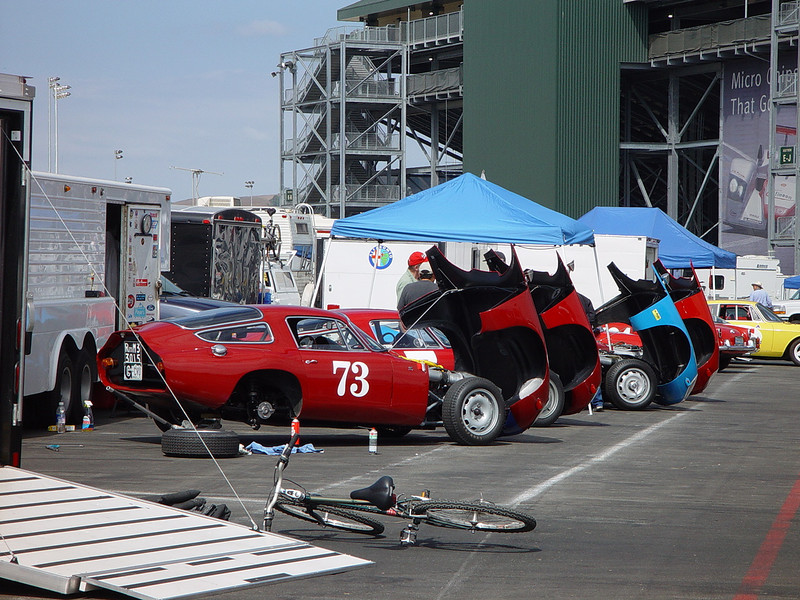 A lineup of Alfa kammbacks