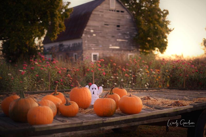 Pumpkin Wagon.jpg