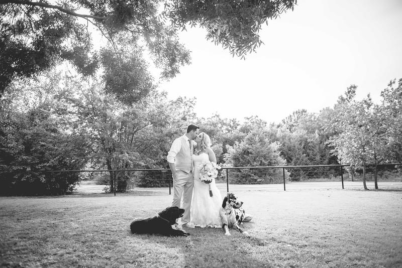 2014 09 14 Waddle Wedding - Bride and Groom-781.jpg