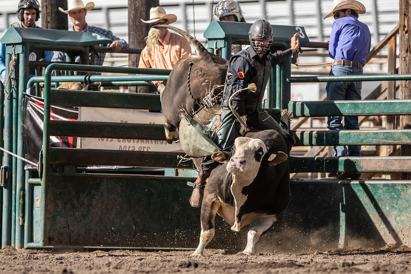 2019 Rodeo E (261 of 512).jpg