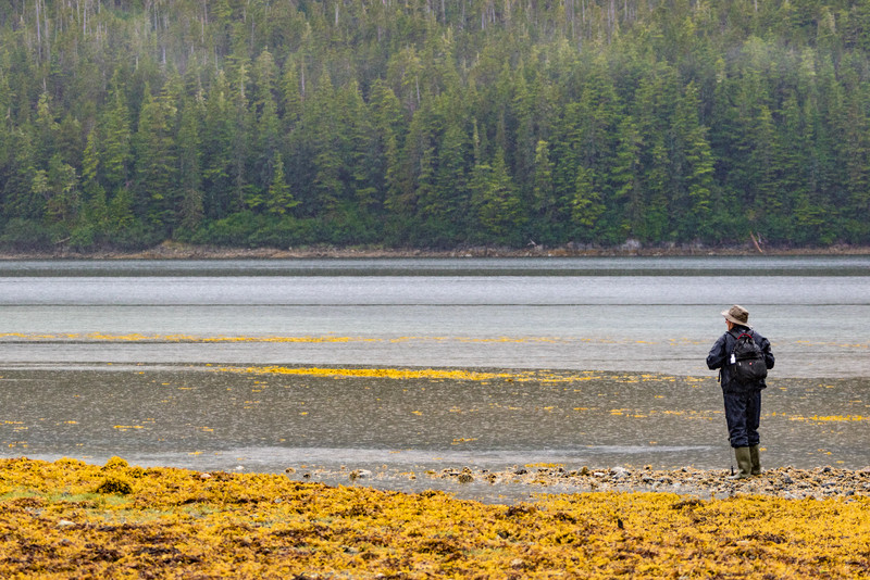 Peter-West-Carey-Alaska2015-0708-2811.jpg
