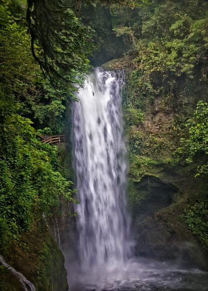 Lapaz Water Fall Gardens, Costa Rica.