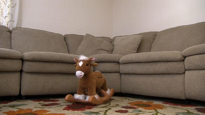 Alana's Horse